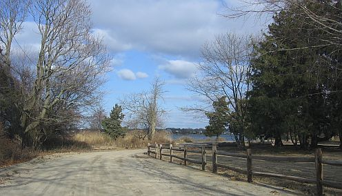 Road leading into park